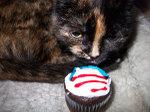 Obama_cupcakes_2